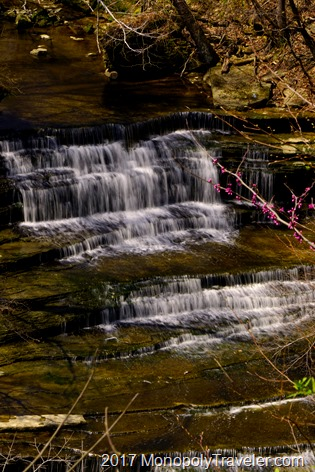 The upper portion of Clifty Falls