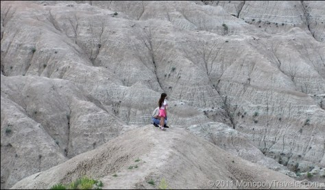 Looking Over the Badlands