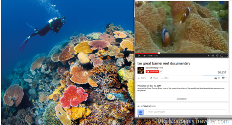Photos and Videos of the Great Barrier Reef