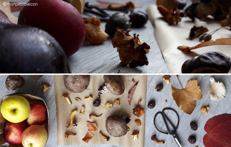 L'automne arrive sur mon petit balcon : bolet, pleurotes, pommes, giroles, feuilles mortes, tilleul, marron