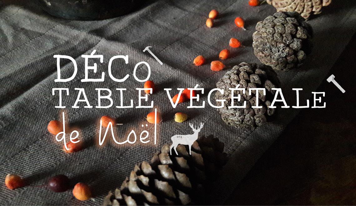Décoration de table de noël végétal do it yourself