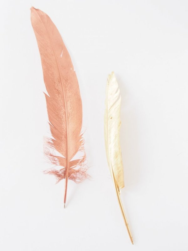 Make-Feather-Pens-gilded-with-copper-gold