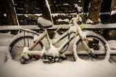 Bike under snow in McGill Ghetto