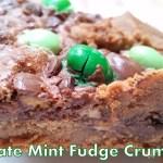 Choctoberfest and Chocolate Mint Fudge Crumb Bars