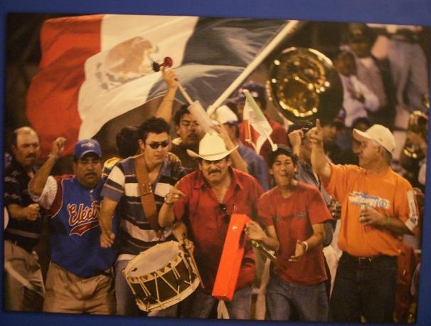 Mexican baseball fans