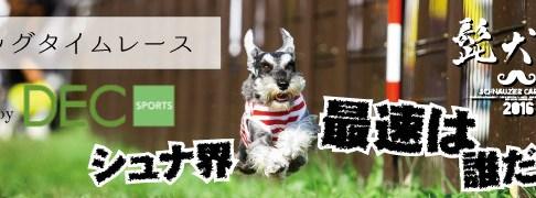モラキジドッグ 髭犬祭