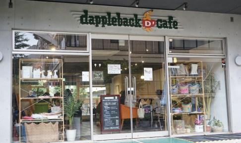 モラキジドッグ ダップルバックカフェ