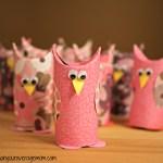 Valentine's Day Toilet Paper Owl