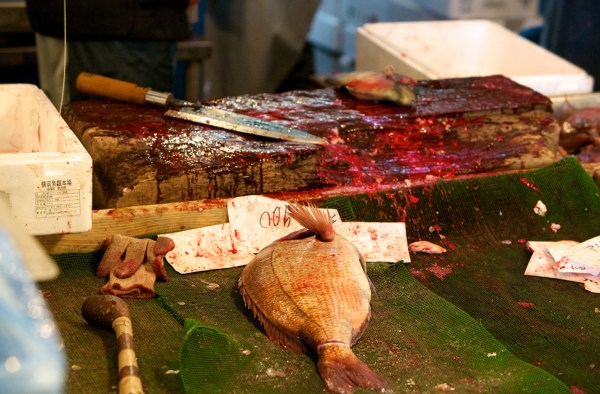 TSUKIJI – BIGGEST FISH AND SEAFOOD MARKET IN THE WORLD