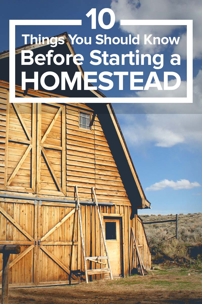 Starting a Homestead