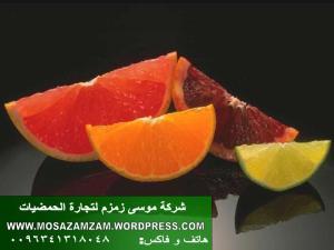 شركة موسى زمزم لتجارة الحمضيات (3)