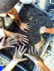 mudball-hands
