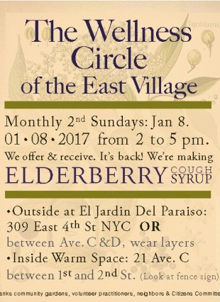 17-01-08-elderberry2