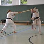 TuS Mosella Schweich e.V., Abteilung Karate