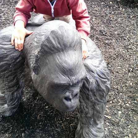 Piggyback on Daddy Gorilla