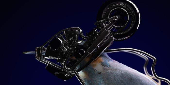 Detail: Bird head with cybernetic helmet