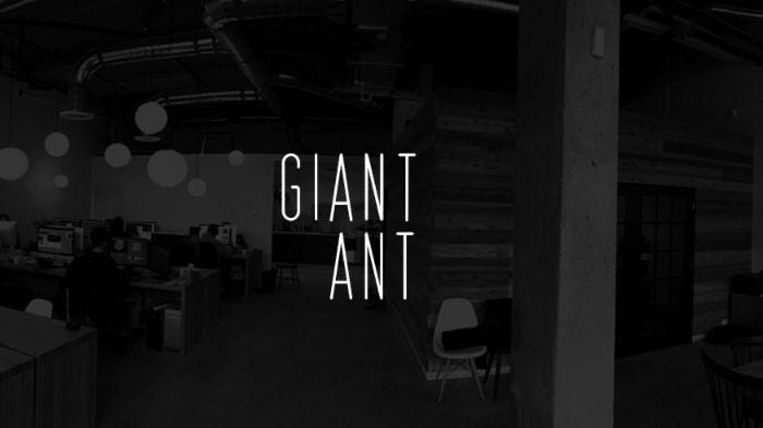 GiantAnt