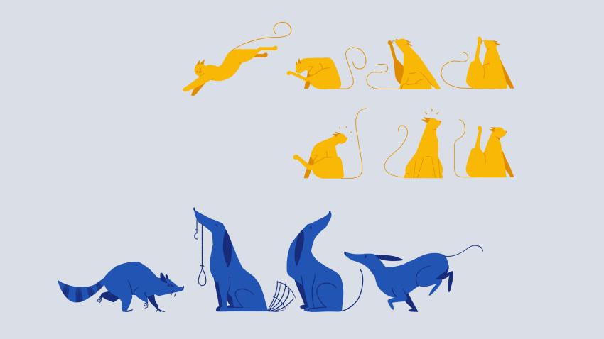 animals-004