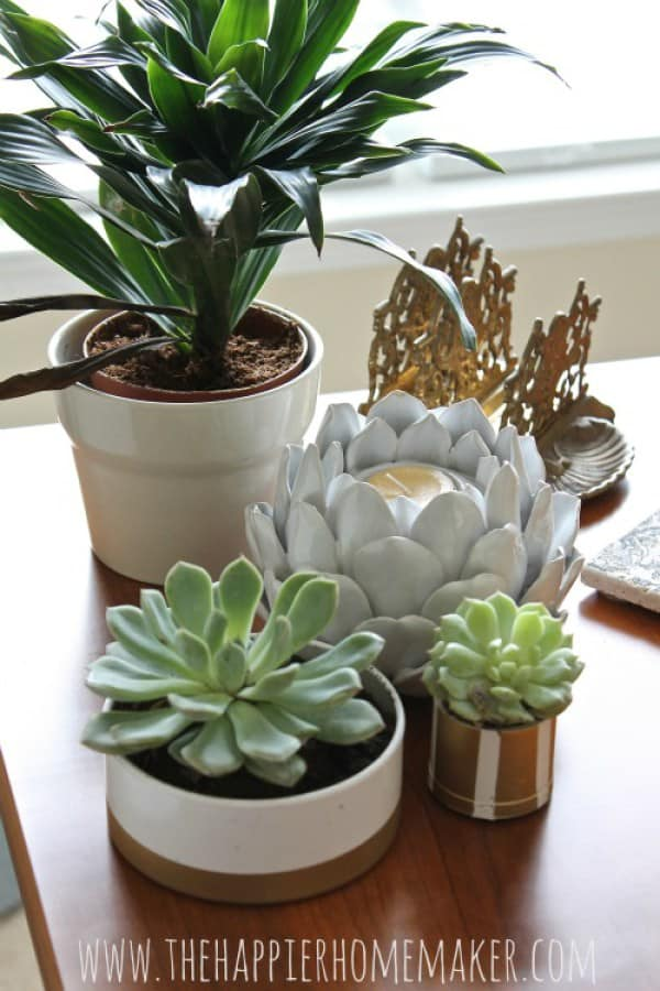 diy-pvc-pipe-succulent-planters