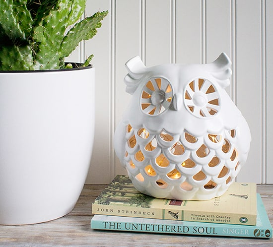 diy whimsical owl nightlight mountainmodernlife.com