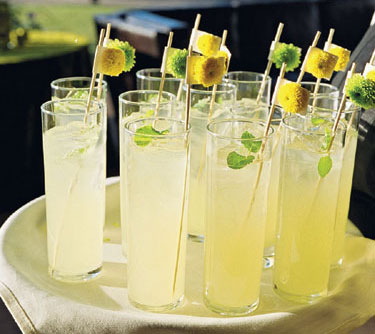 Glasses of Lemonade