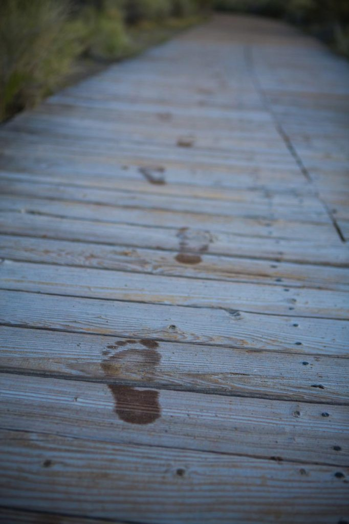 footprints on a dock