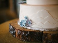 wedding cake with succulents and mountains - Mount Rose Wedding