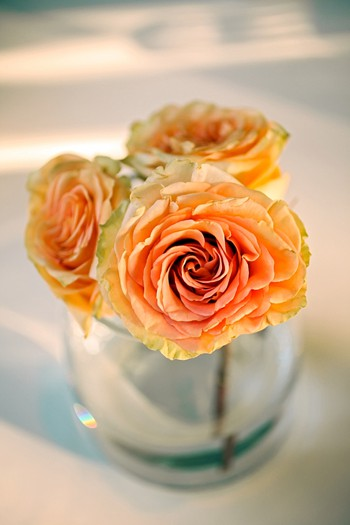 pretty orange roses in bud vases