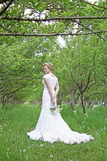 Utah Orchard Bridals | Amber Shaw Photography