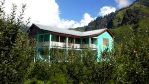 manali-cottage