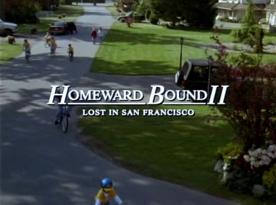 Homeward Bound II: Lost in San Francisco (1996)