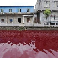 NearEnd: River Suddenly Turns Bloody Red Overnight in China