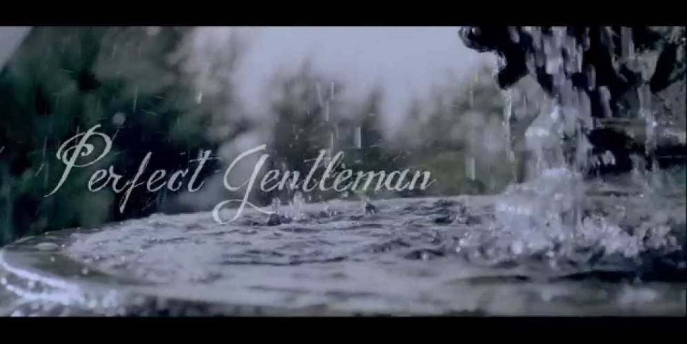 Sean Tizzle – Perfect Gentleman : Video [dl]