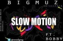 BigMUZ - Slow Motion Art
