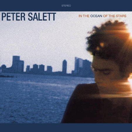 In the Ocean of the Stars by Peter Salett, Mr. Media Interviews