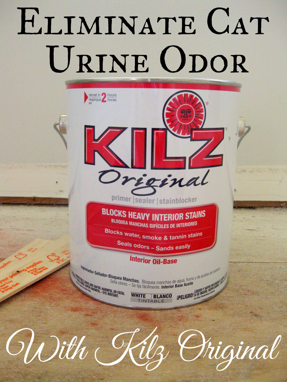 Eliminating Cat Urine Odor A Kilz Original Review Mrs