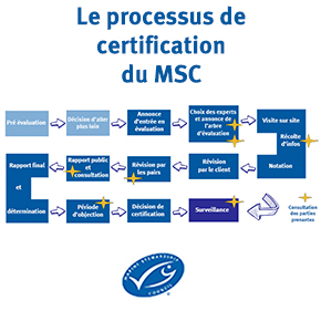 Processus-certification-MSC-290x290