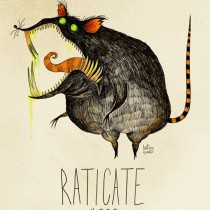raticate pokemon burton tim