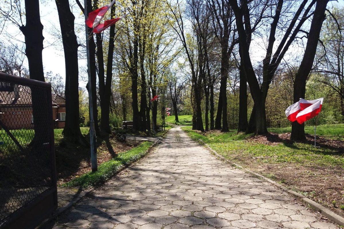 Wiosna w forcie Swoszowice.
