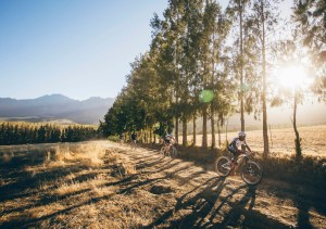 Team Investec Songo Specialized's Christoph Sauser and Sipho Madolo during stage 1 of the 2016 Absa Cape Epic Mountain Bike stage race held from Saronsberg Wine Estate in Tulbagh, South Africa on the 14th March 2016Photo by Ewald Sadie/Cape Epic/SPORTZPICSPLEASE ENSURE THE APPROPRIATE CREDIT IS GIVEN TO THE PHOTOGRAPHER AND SPORTZPICS ALONG WITH THE ABSA CAPE EPIC{ace2016}