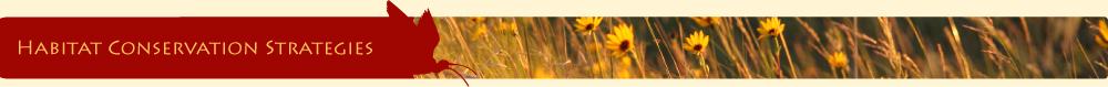 habitat-conservation-strategies-title-bar