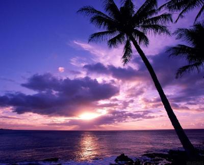 Pictures depot: Sunset Beach wallpaper