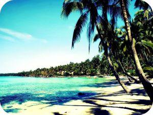 Florida, beach, orlando beach, Florida coast, florida beach, Orlando, tropical beach, holiday, The sunshine state