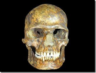 Kostenki_thumb Los restos hallados podrían pertenecer a uno de los primeros europeos, un hombre que vivió hace 36.000 años en Kostenki, al oeste de Rusia