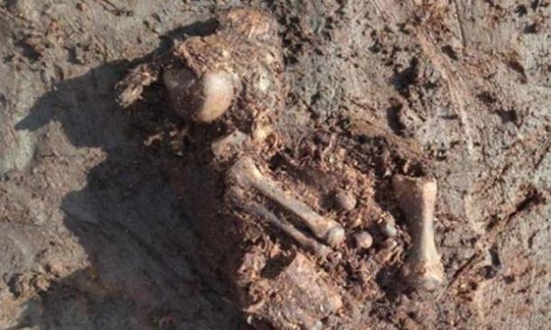 Cuerpo pantano antiguo encontrado en Irlanda