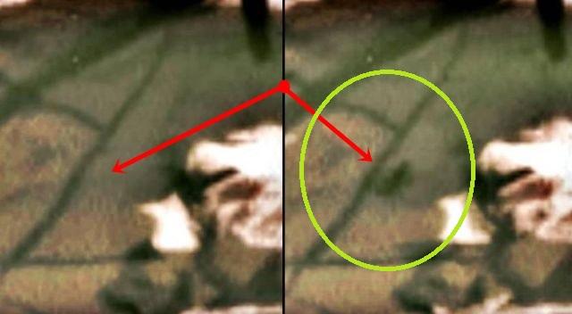 gitg ¿Una Extraña Criatura es Captada Caminando Junto al Rover Curiosity? ¿Un Insecto?