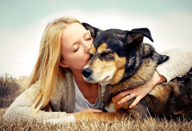 comunicacion-telepatica-animales-610x250 ¿Es posible la comunicación telepática con los animales?