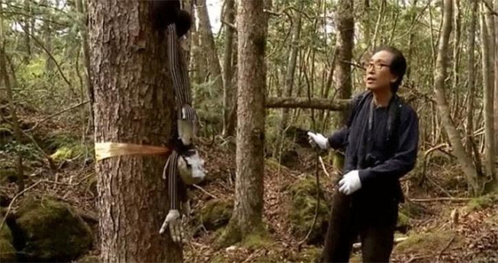 bosques-malditos-del-mundo-7 Bosques malditos del mundo