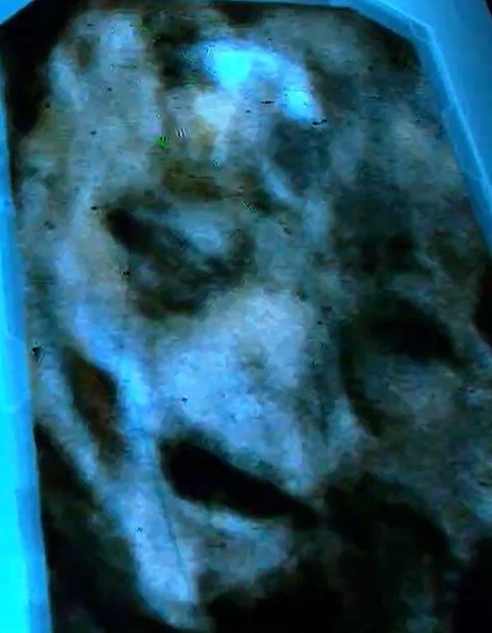 craneo-bewitness-extraterrestre-2 El Supuesto Extraterrestre del Evento BE WITNESS (Imágenes)