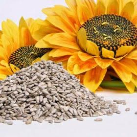 fgb Obtén más calcio de forma saludable mediante estas semillas